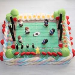 Terrain de rugby en bonbons