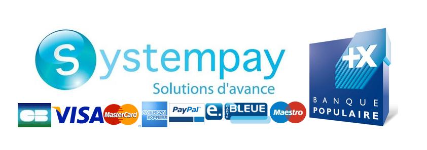 Solution de paiement sécurisé de notre site
