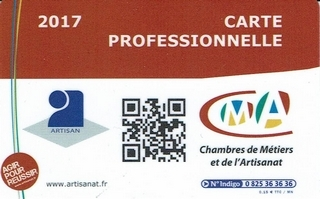 Carte Professionnelle 2017