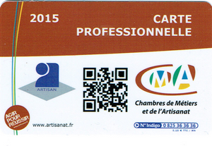 Carte Professionnelle 2015